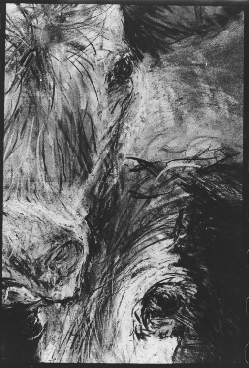 Coal cows detail