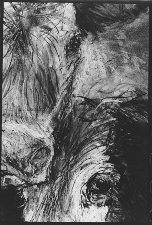 Coal cows detail