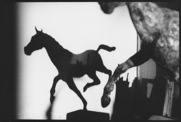 Running horse Shadow